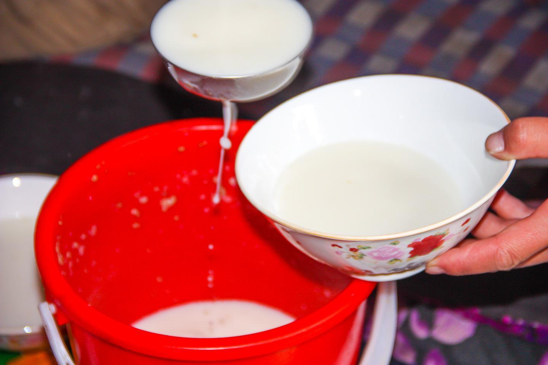 kumis fermented mare's milk Kyrgyzstan