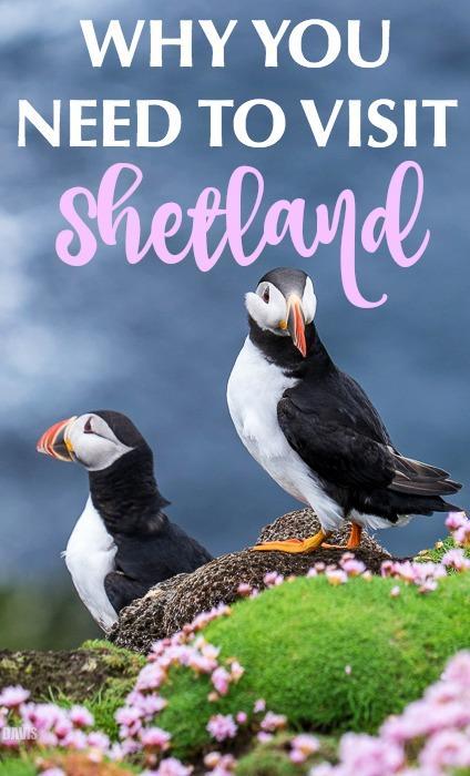 Travel to Shetland Islands Scotland