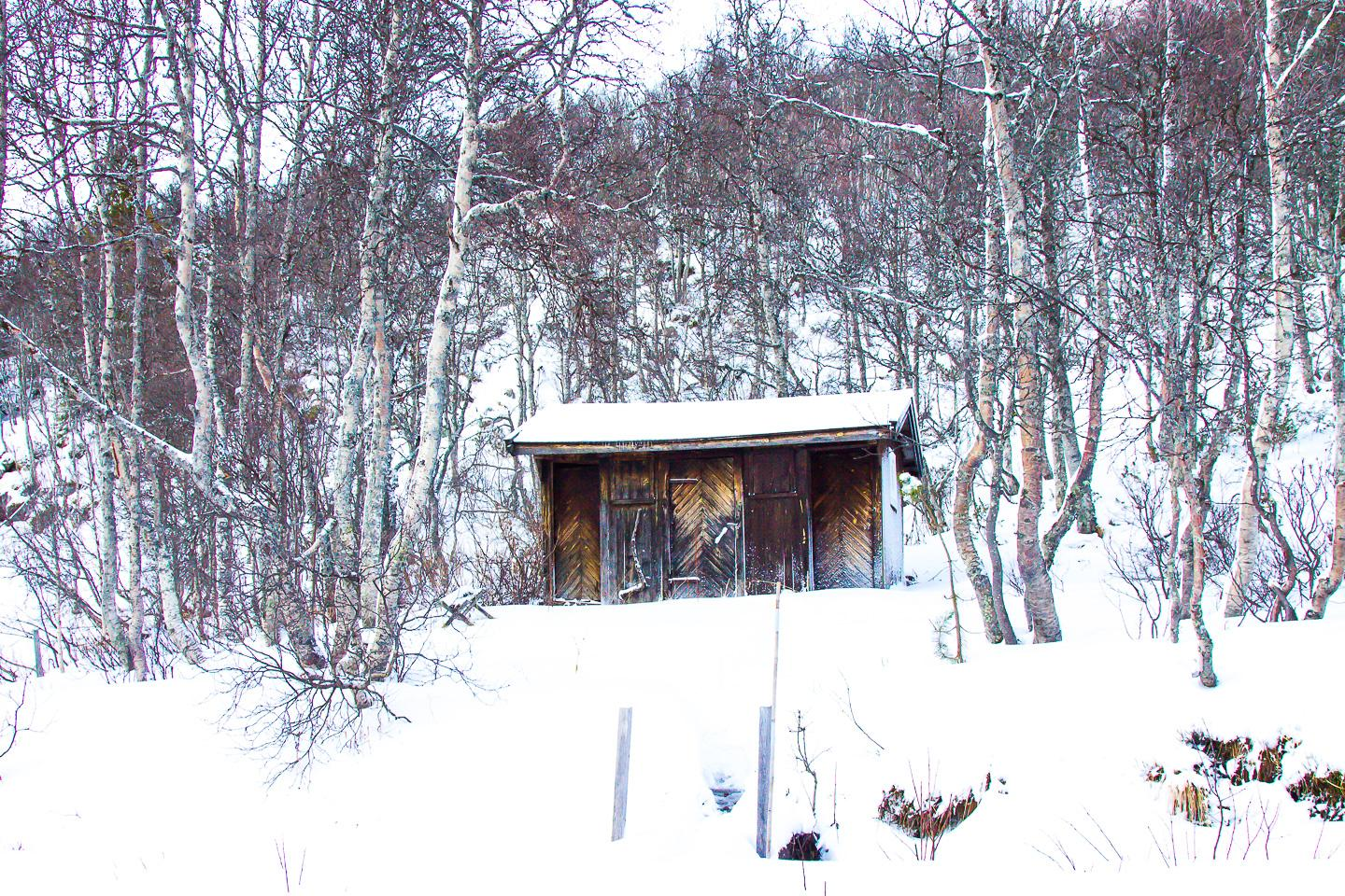 outhouse norway cabin