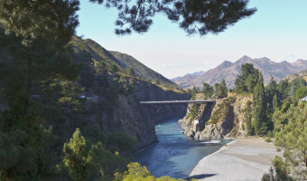4 Themed New Zealand Road Trips