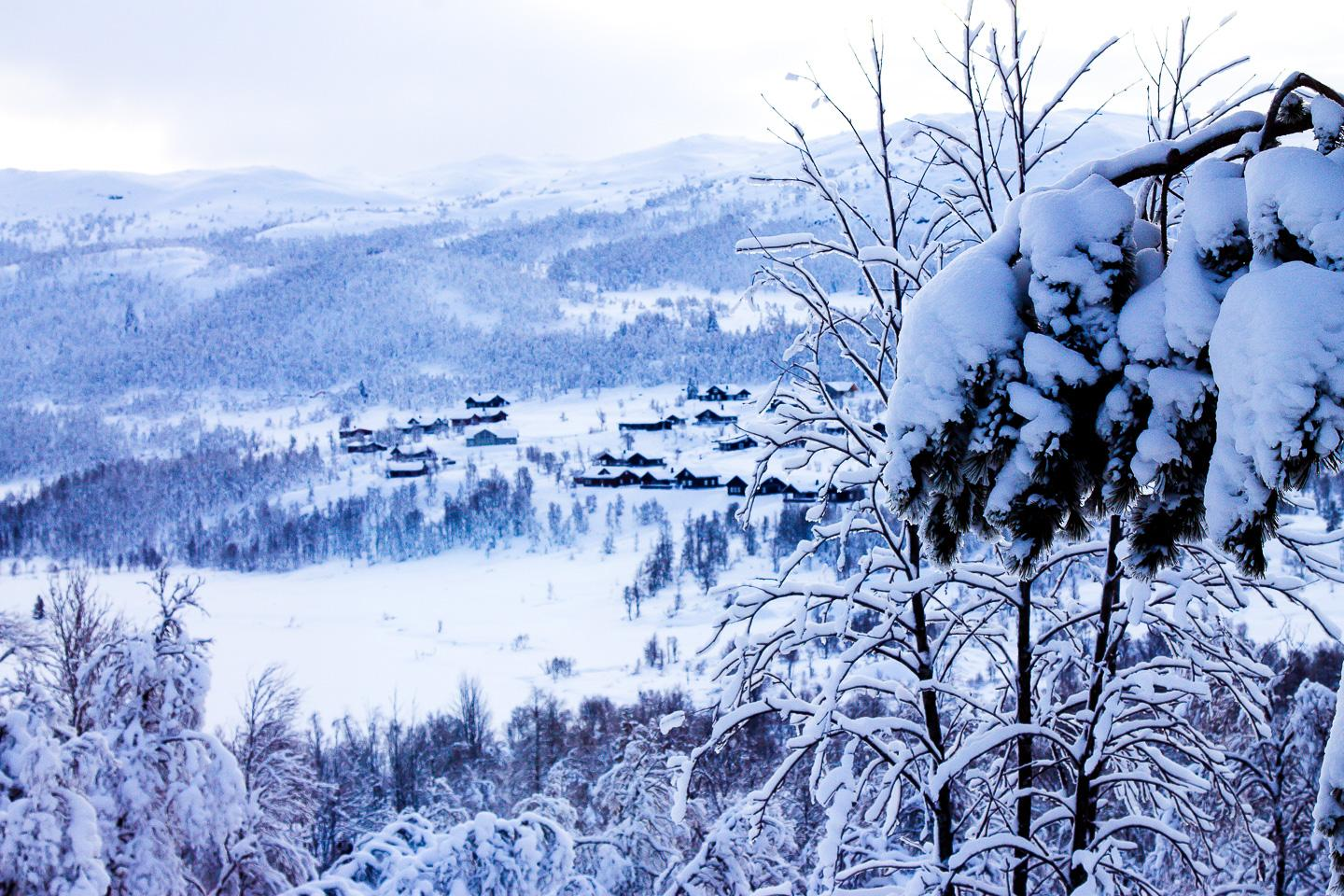 winter Rauland , Telemark Norway