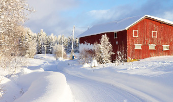 9 Reasons to Visit Norway in the Winter