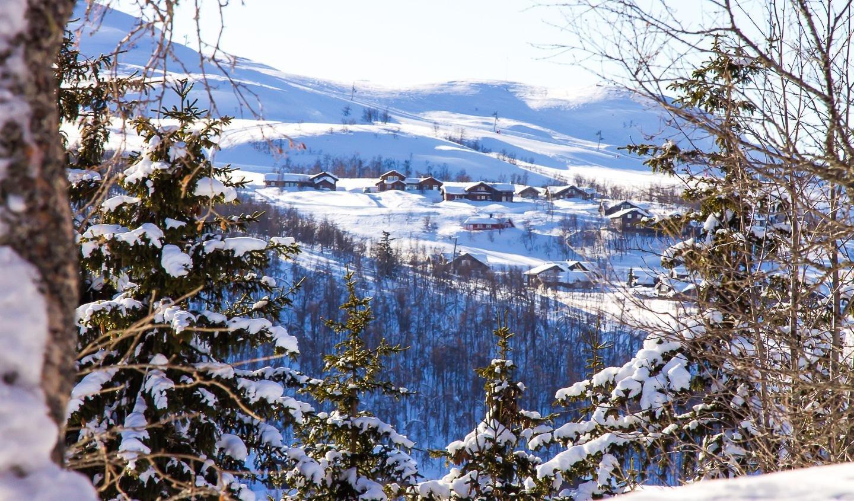 rauland norway winter
