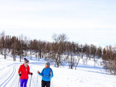 winter Rauland