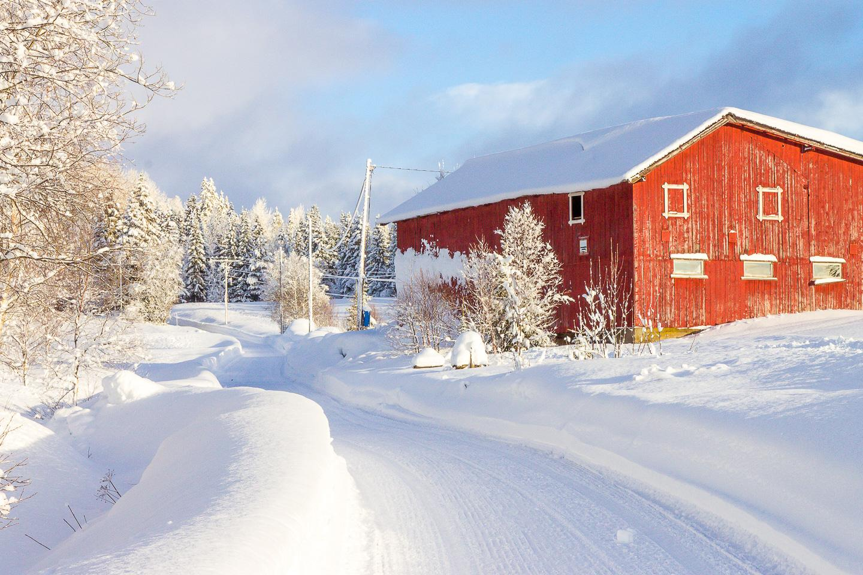 rauland telemark winter