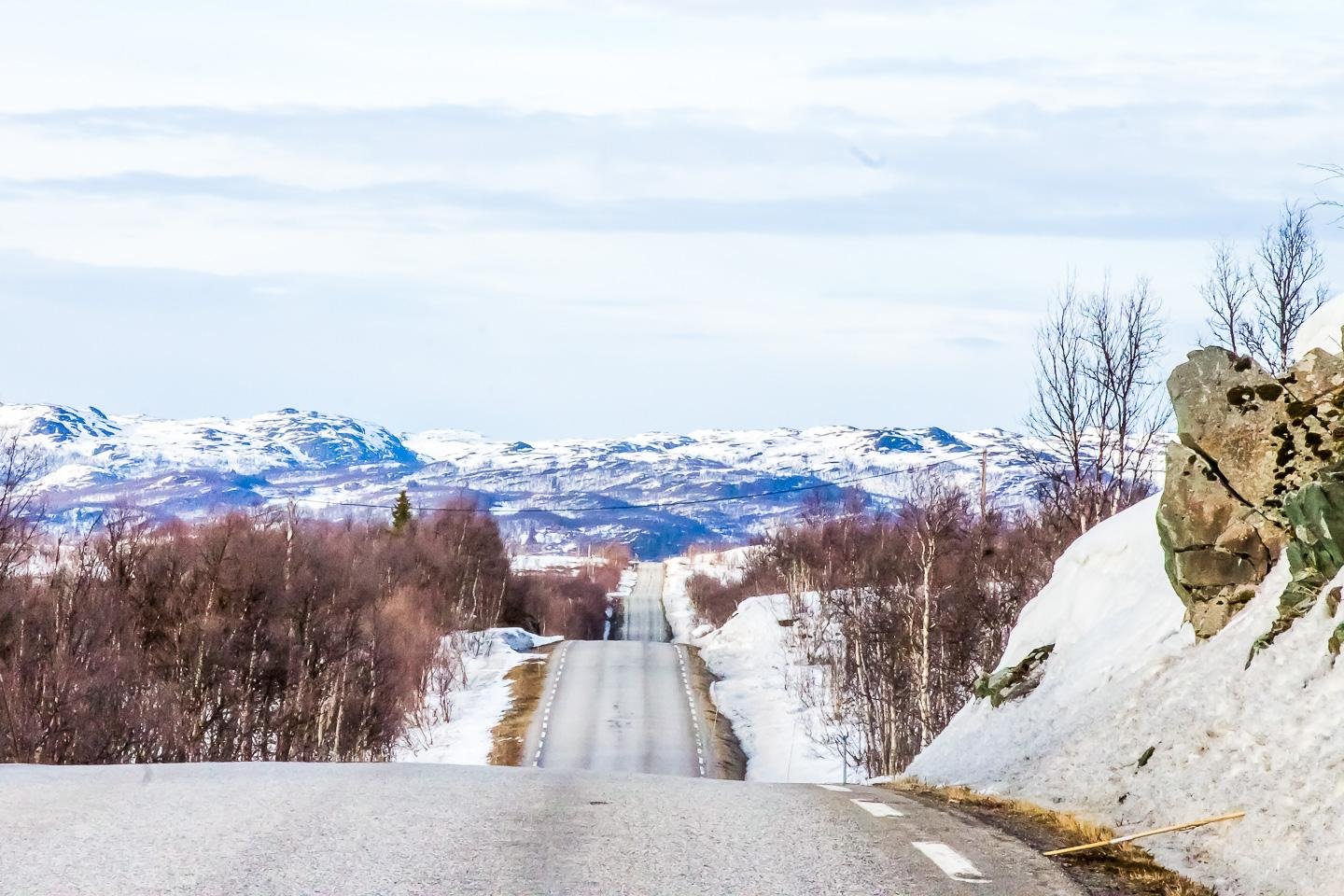 budget travel norway transportation, norwegian roads