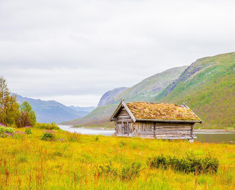 Mogen Hardangervidda summer in Norway