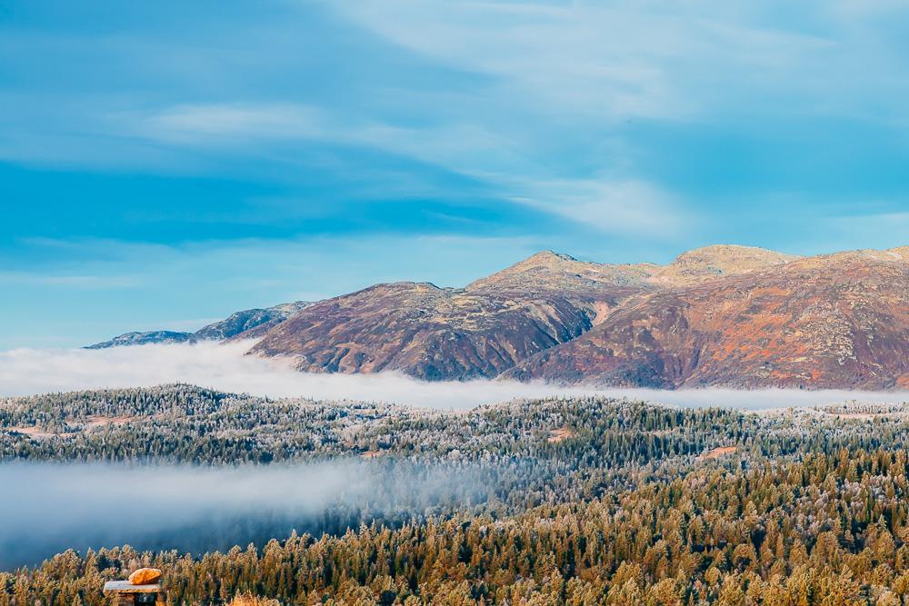 norwegian mountain fog autumn norway