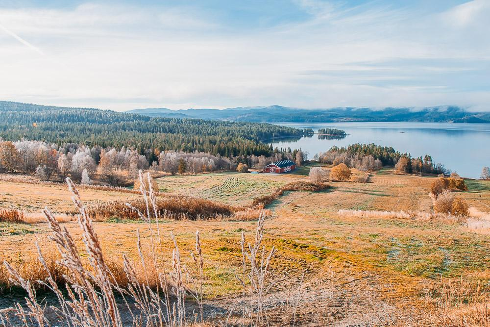 telemark norway in autumn frost colors