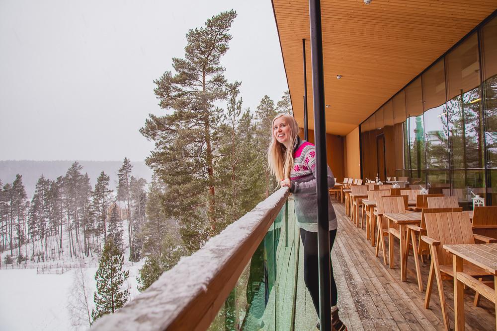view from haltia finnish nature centre espoo finland winter snow