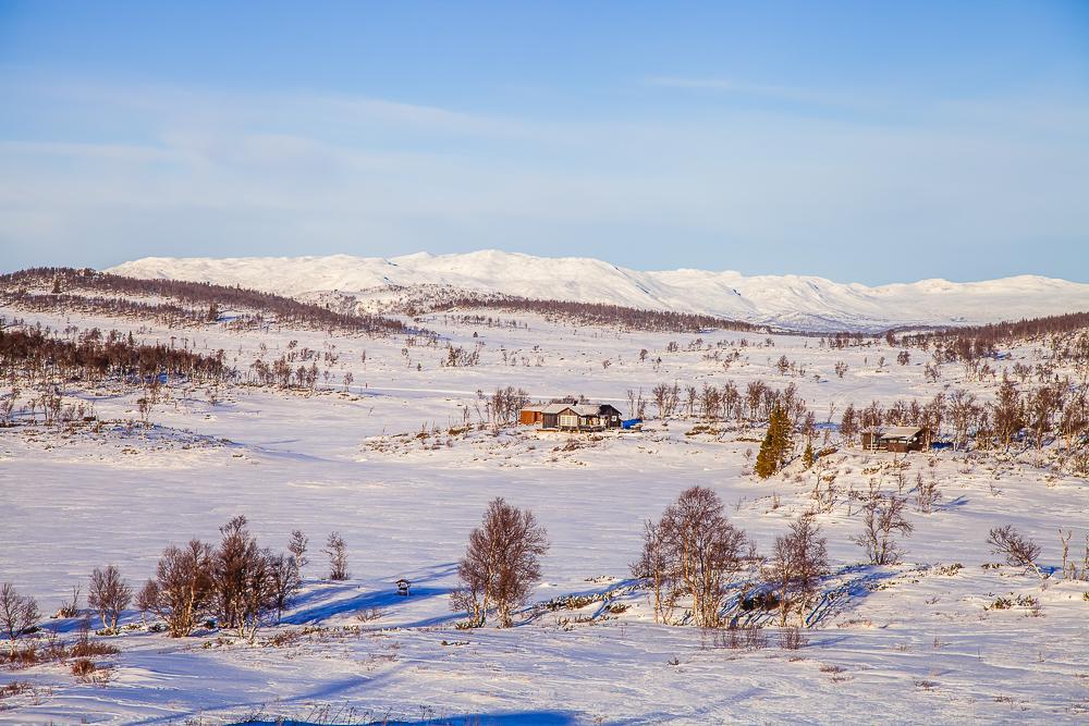 winter rauland telemark vierli