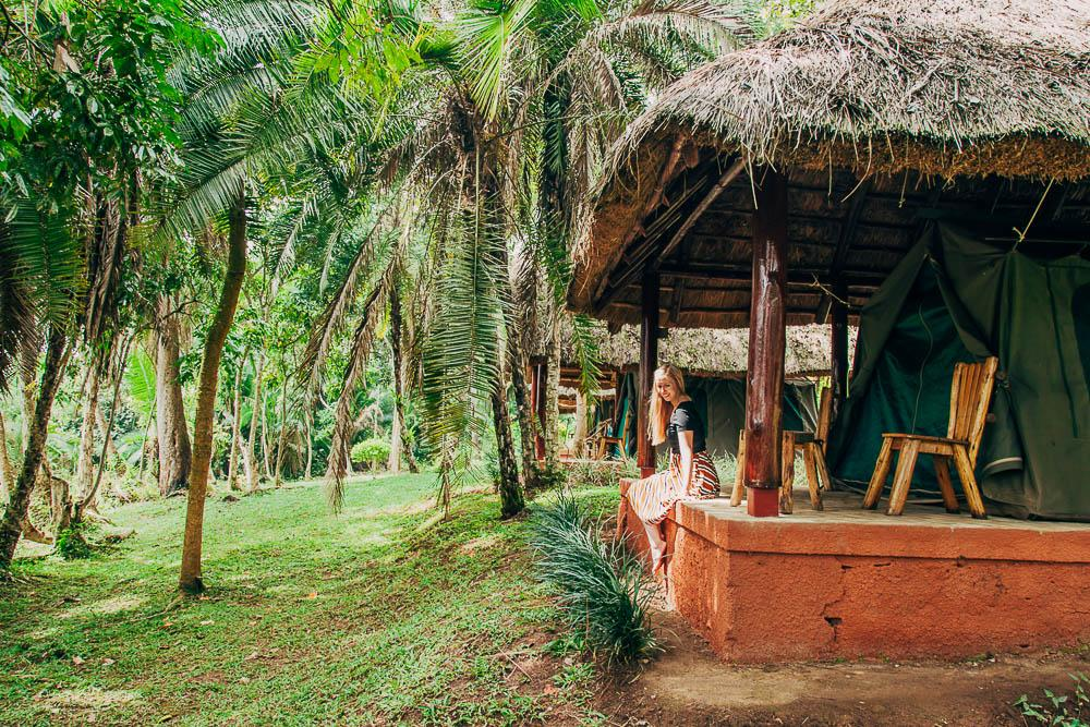 staying at a lodge by Kibale National Park in Uganda