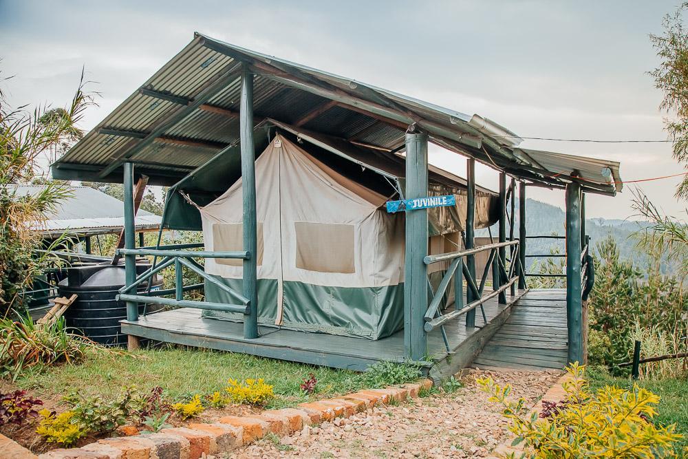 Ruhija Gorilla Friends Resort and Campsite Bwindi National Park accommodation Uganda
