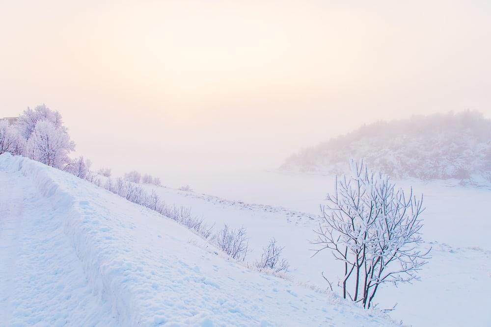 winter rauland telemark norway snow fog