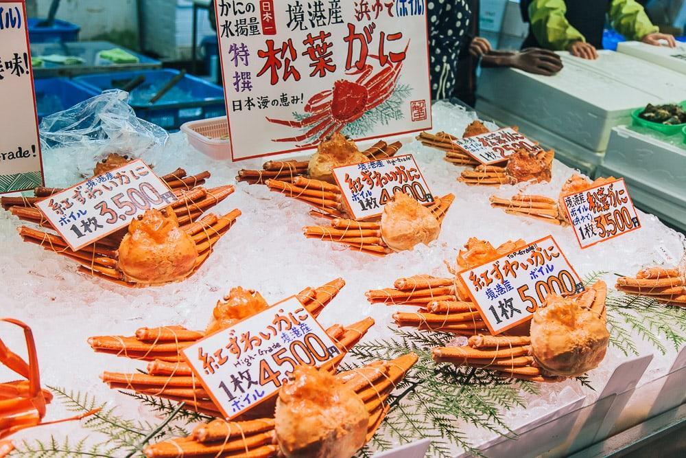 sakaiminato fish market