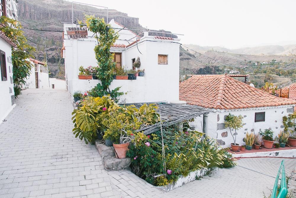 fataga village day trip gran canaria