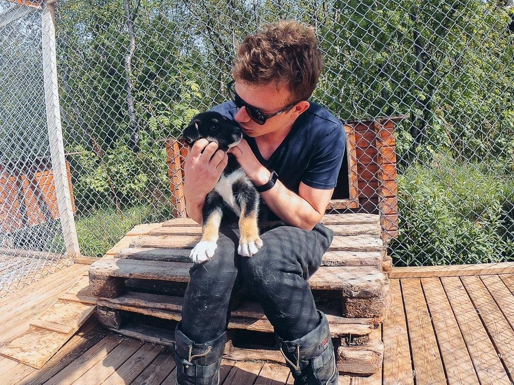 visiting Holmen Husky Lodge in Alta in June husky puppies