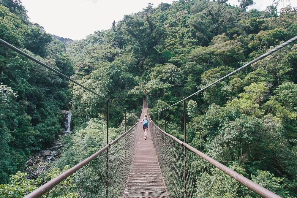 hanging bridges boquete panama