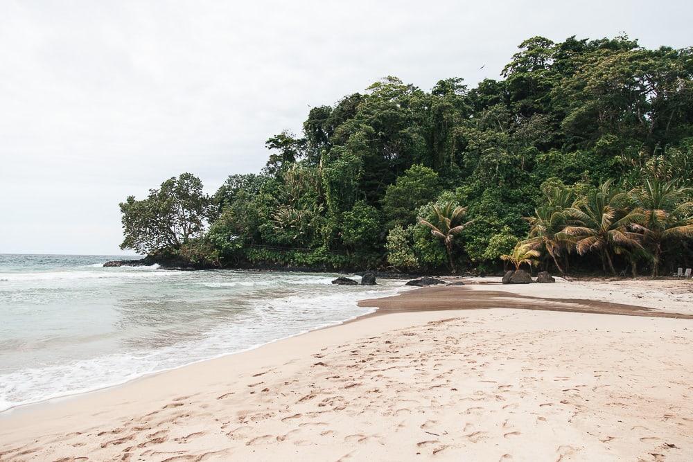 red frog beach resort bocas del toro panama turtle beach