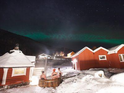 northern lights dyrøy norway