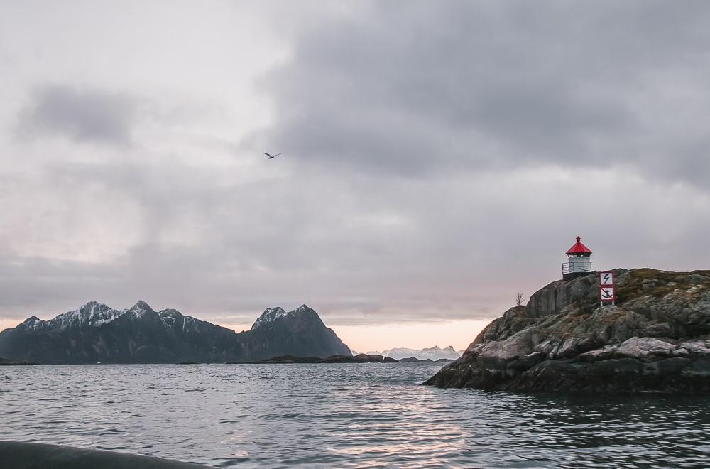 trollfjord lofoten safari winter