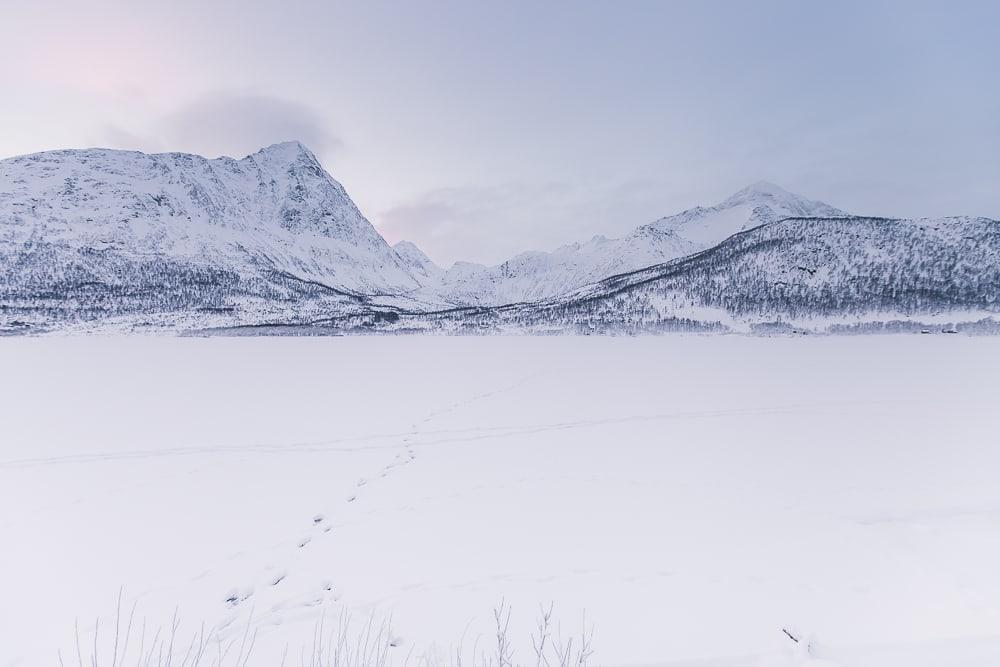 vesterålen norway airbnb