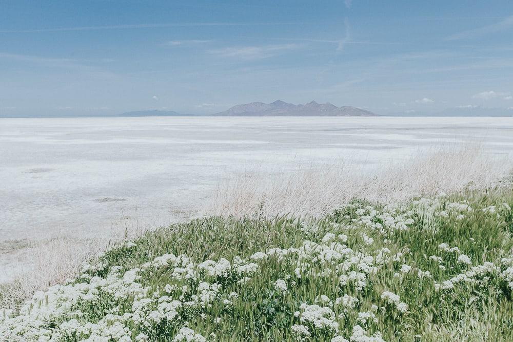 the great salt lake utah