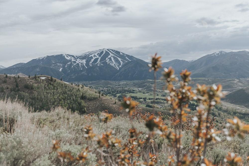 Proctor Mountain loop hikes Ketchum idaho