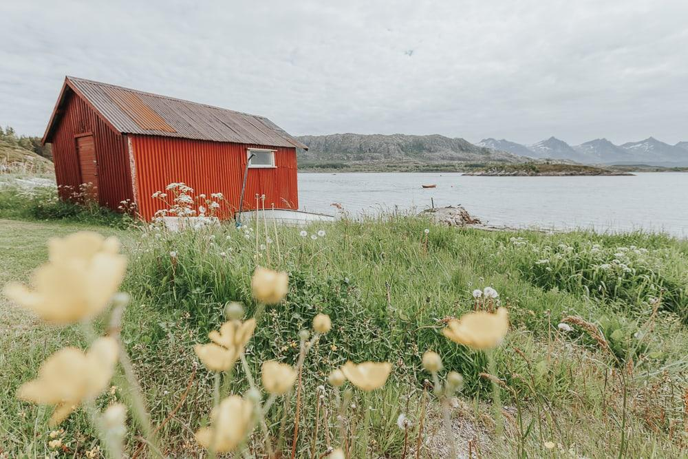 dønna helgeland coast norway in summer red cabin with flowers