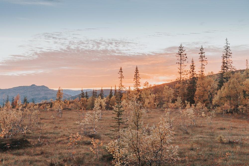helgeland northern norway in autumn
