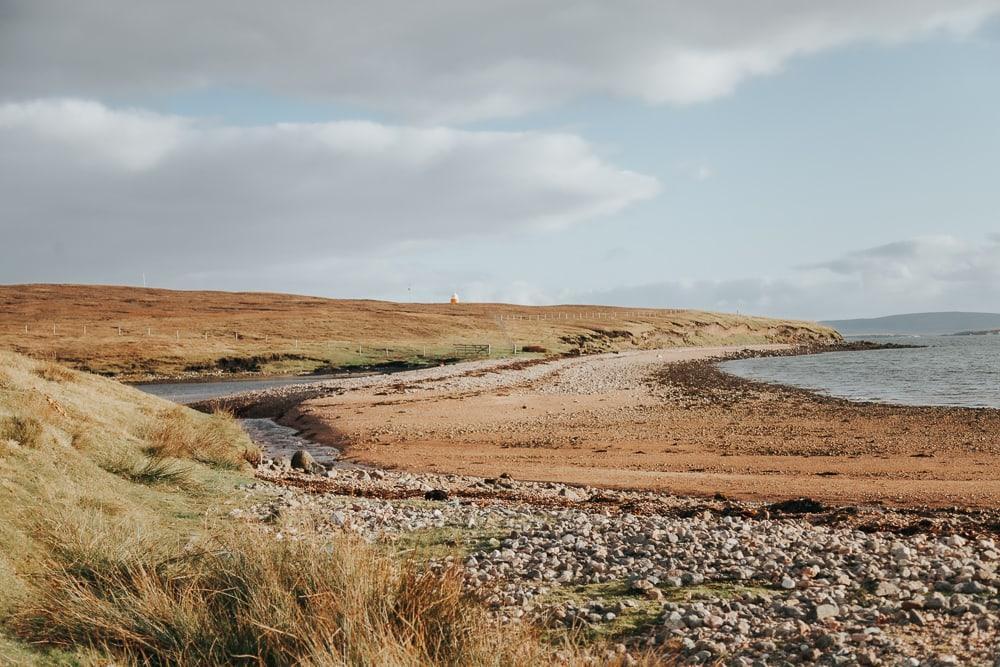shetland photo tours wildlife walk