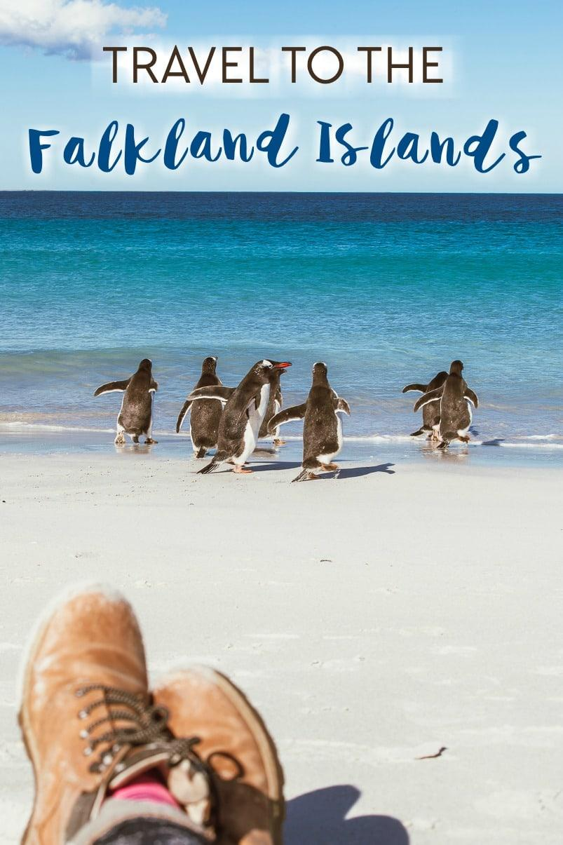 travel to the falkland islands