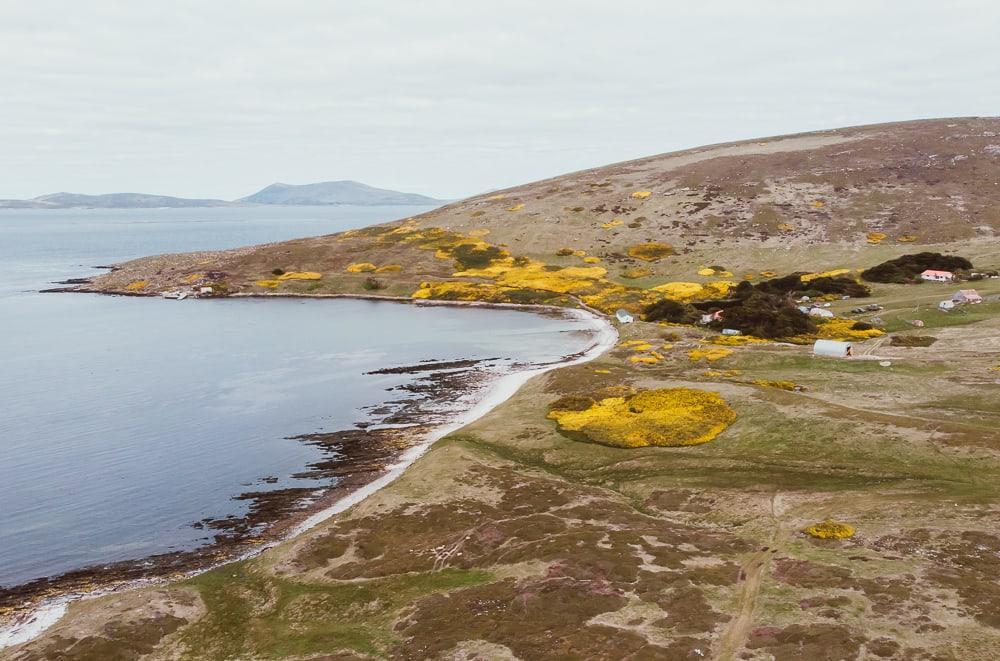 carcass island beaches drone shot falklands
