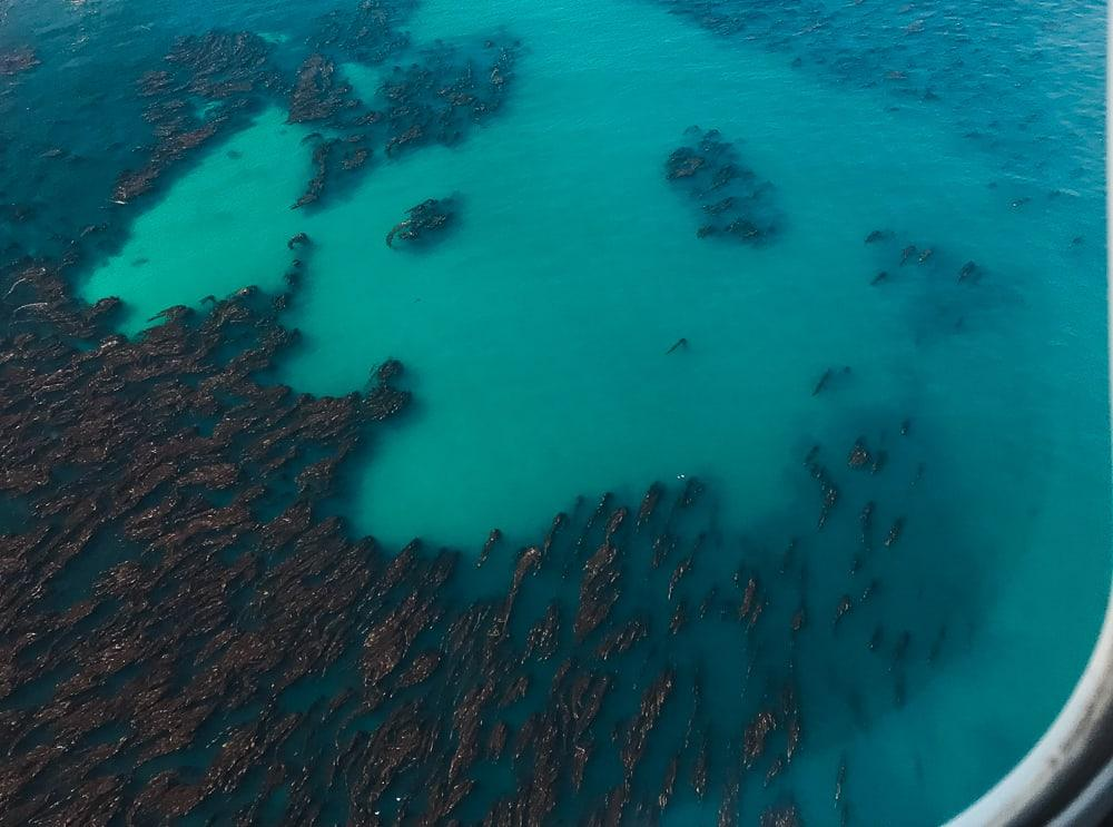 views from figas islander flights falklands