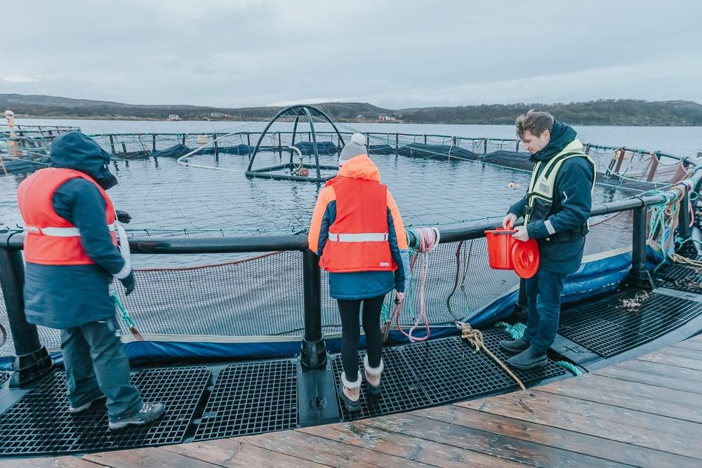 aquaculture center brønnøysund norway