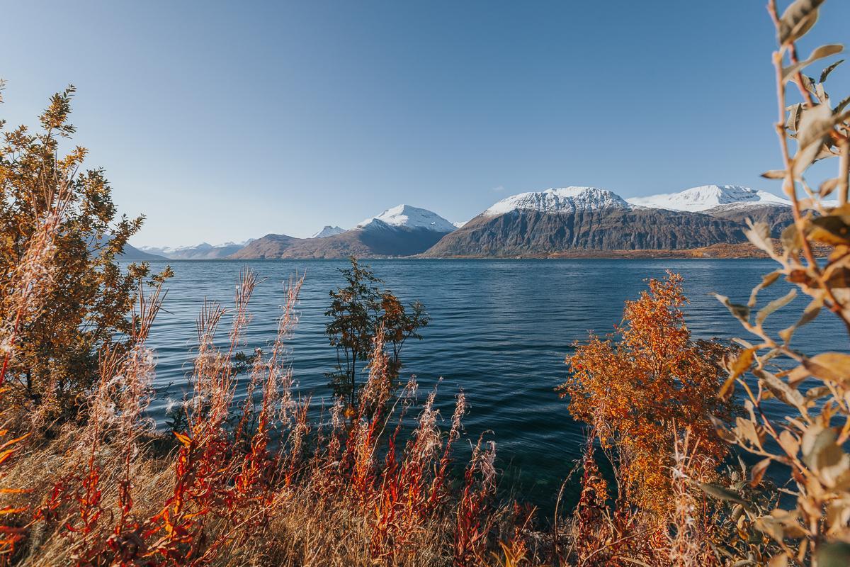 lyngenfjord in autumn norway