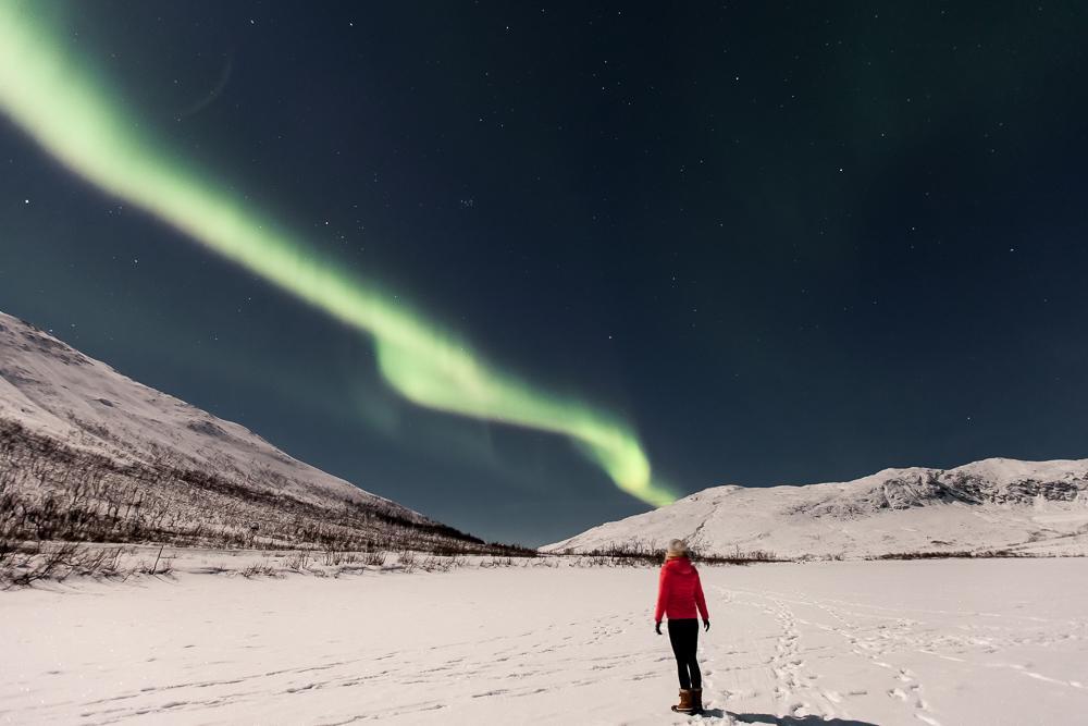 northern lights kvaløya tromsø Norway