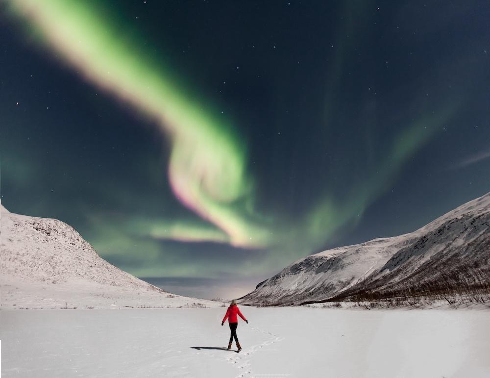 northern lights kvaløya tromsø