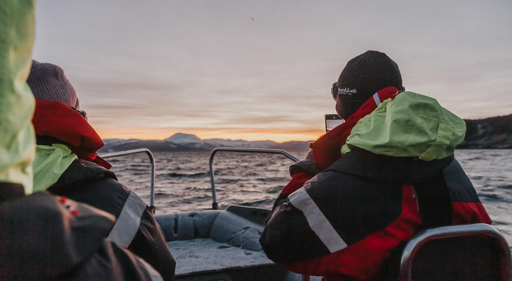 RIB whale tour norway